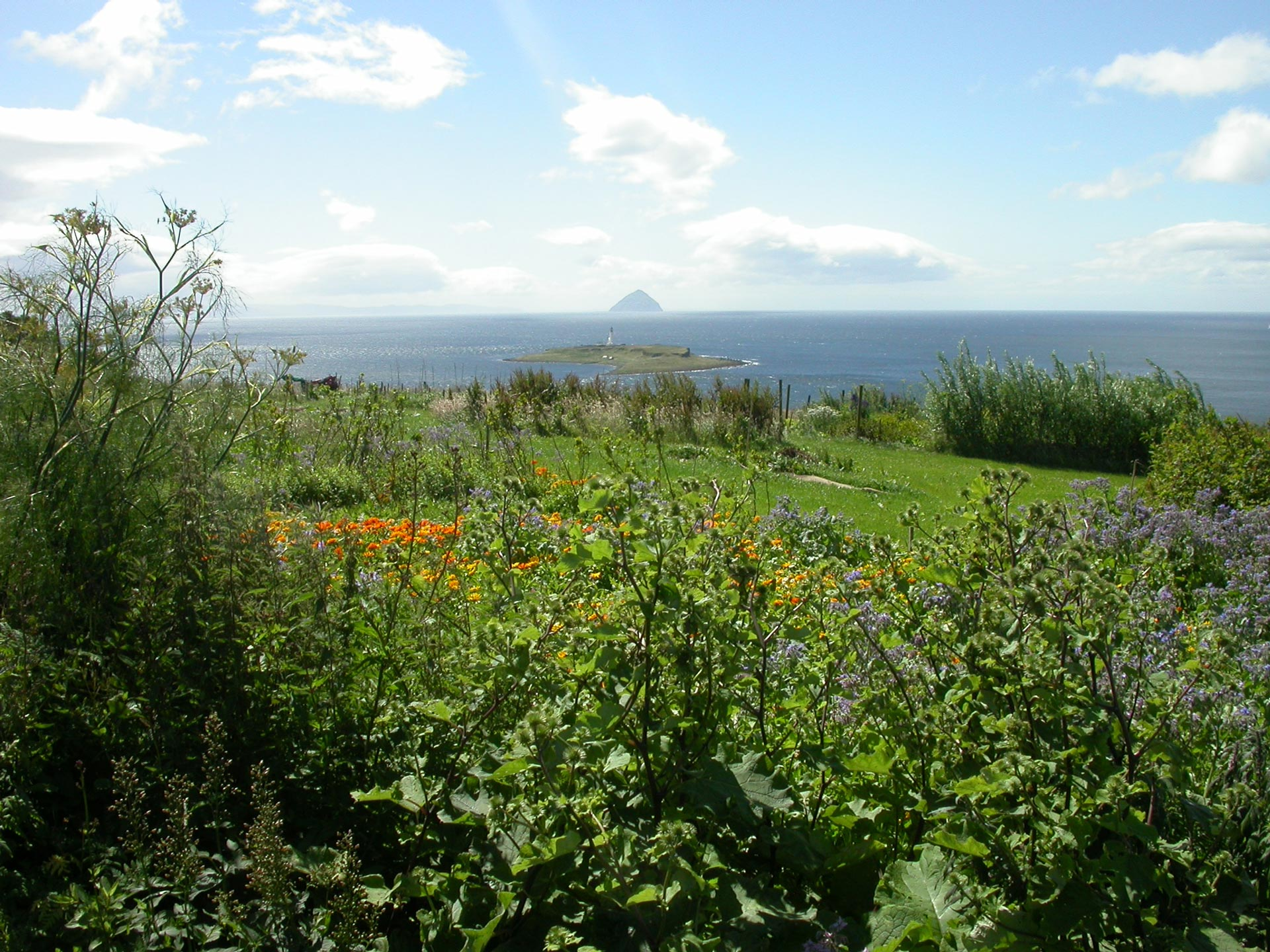 Drimlabarra Herb Farm - Arran